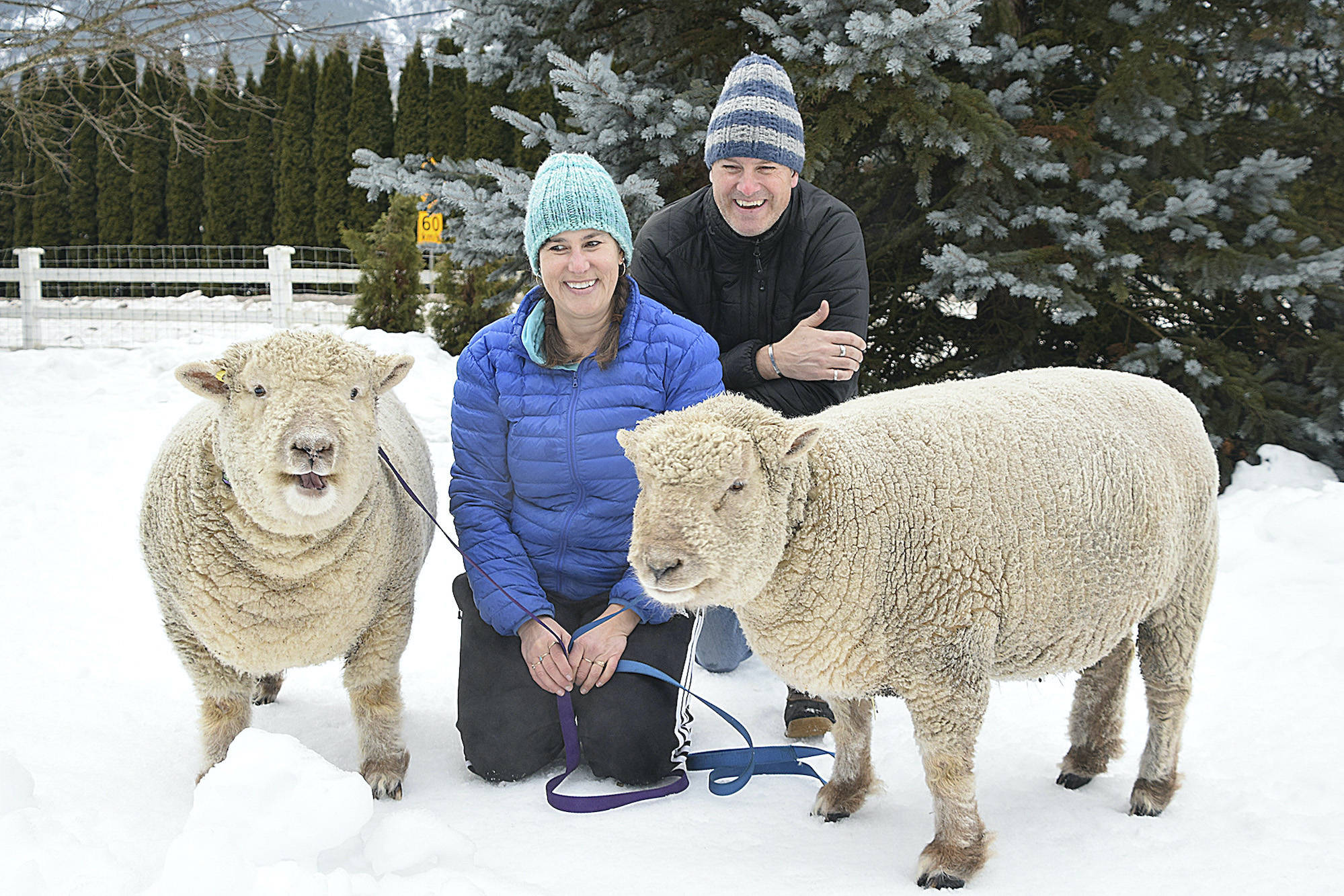 Gin voices his view of having his photo taken as Ken and Karleen Kantymir pose with him and his brother Tonic. (Martha Wickett - Salmon Arm Observer)